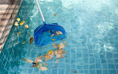 The Challenges of Pool Ownership During a Global Pandemic